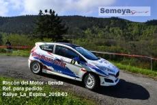 Rallye_La_Espina_2018-03