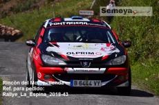Rallye_La_Espina_2018-43