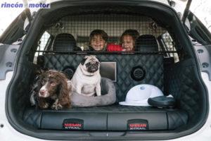 Nissan X-Trail 4 Dogs, el perro un miembro más de la familia