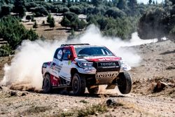 Rallye Marruecos Alonso Toyota