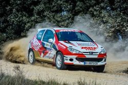 Peugeot 206 RC Max.Gr.A (Tierra)